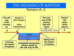 Baptism chart