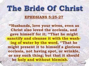 Ephesians 5:25-27