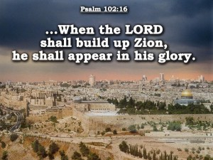 Psalm 102:16